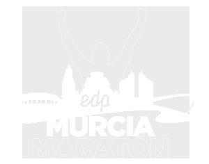 Estudio de diseño web en Murcia